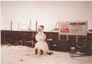 The snowman in the Hook 's pen in The Yards