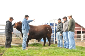 Blake and Dale (Coaches) instruct students at farm